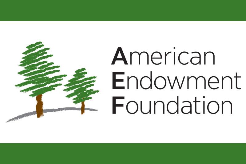 American Endowment Foundation